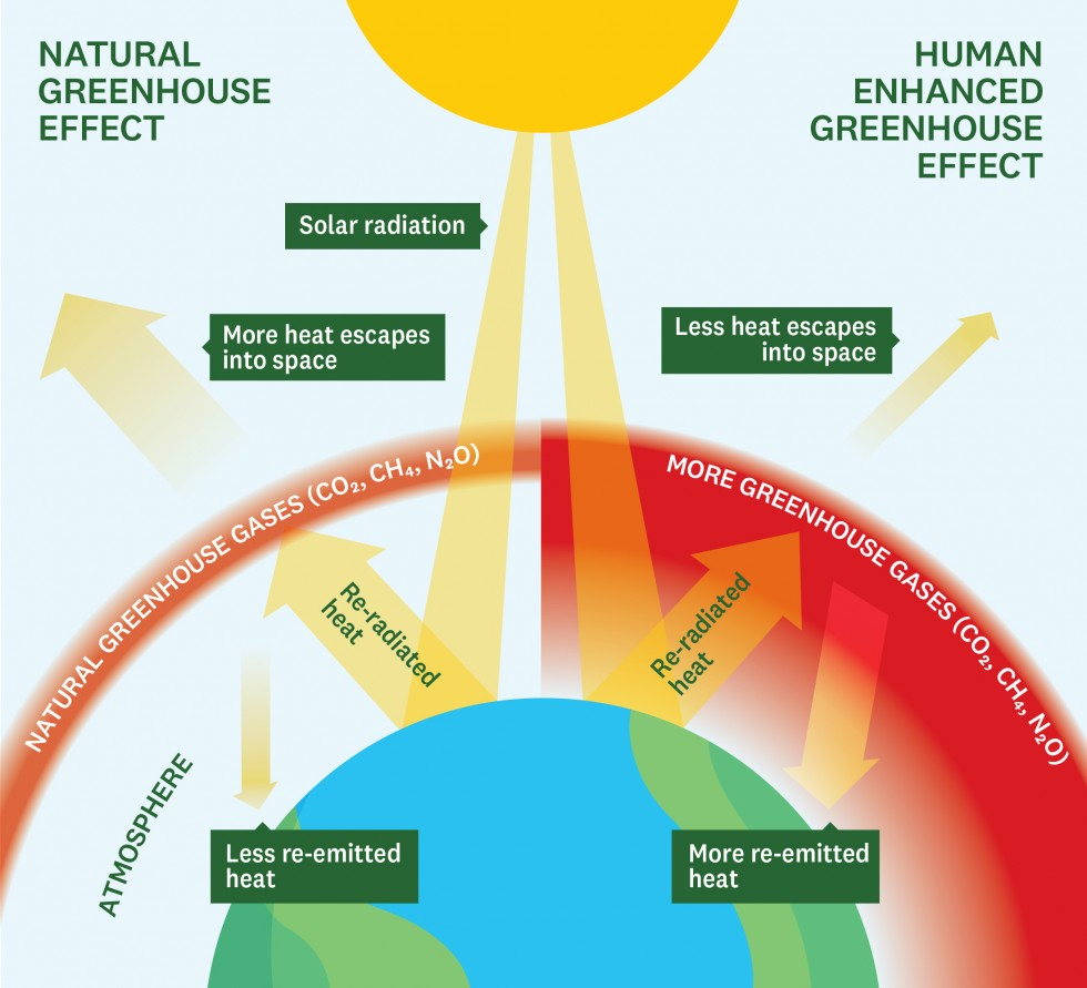 The greenhouse effect explained as an infographic.