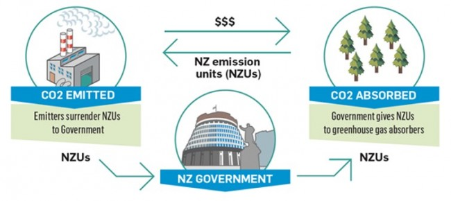 How the NZ Emissions Trading Scheme works